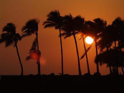 Paul Allen Big Island Hawaii