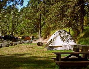 https://lovingthebigisland.wordpress.com/2010/03/16/exploring-hawaii-volcanoes-national-park-kulanaokuaiki-campground/
